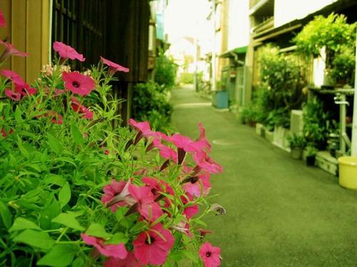 中浜町2.JPG